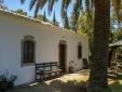 Staying at Holiday House Casa Velha São Brás de Alportel Algarve Portugal landscape nature palm trees