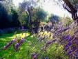 Villa Lavande France Grasse Holiday Villa