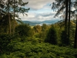 Stay at Linthwaite House Bowness-on-Windermere Cumbria and the Lake District fresh air forest trees
