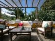 Palm in the garden