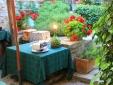 """the restaurant """"Al vecchio Forno"""""""