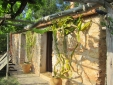 Can Marti houses to rent ibiza charmign country side