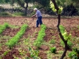 Masseria Uccio by night
