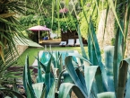 Les Terrasses Ibiza