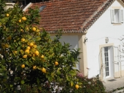 Lemon House Estoril